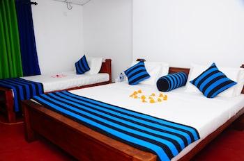 丹布拉陽光錫蘭哈巴拉娜飯店的相片