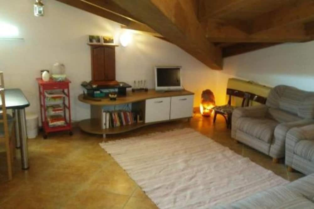 Comfort Apartment, Multiple Beds, Shared Bathroom - Living Room