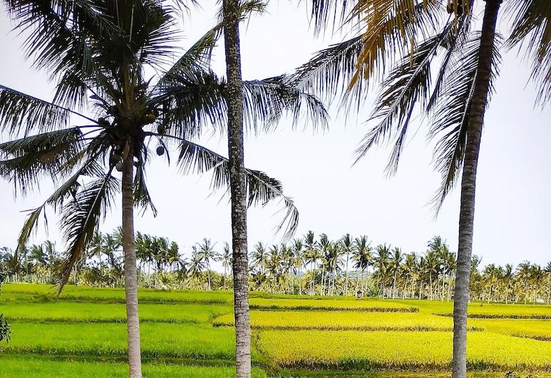Anggira Villa Ubud, Ubud, Vila, 2 miegamieji, atskiras baseinas, Vaizdas į kurortą