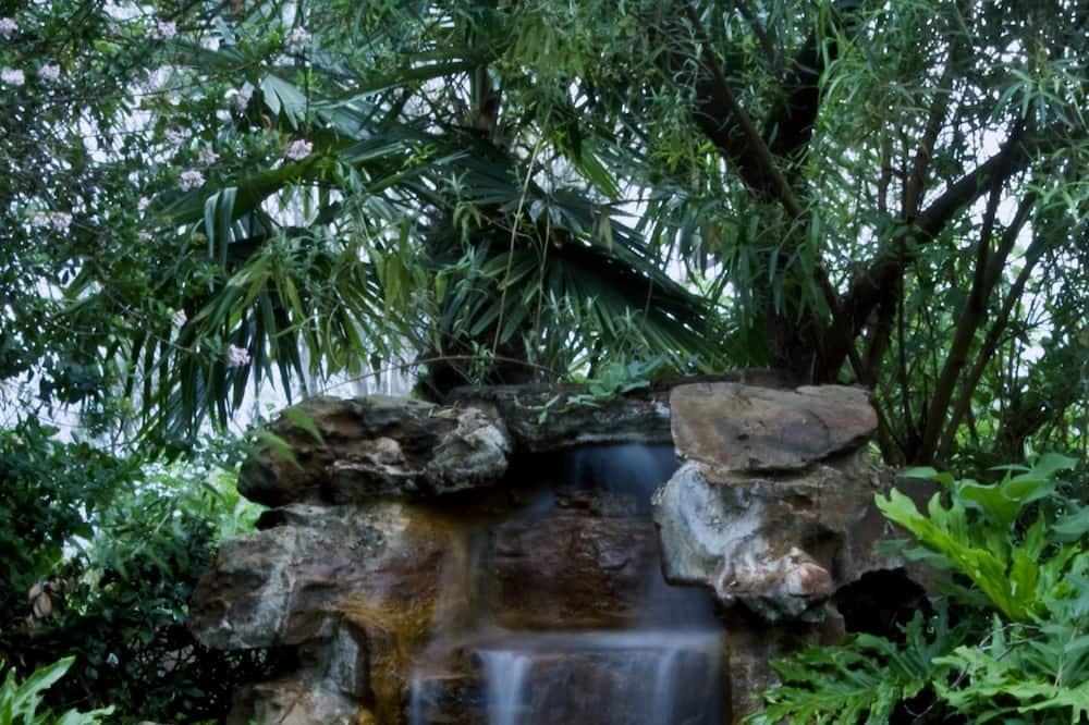Vízeséses medence