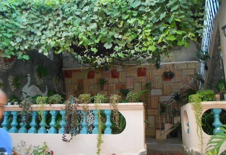 Hostal Zamora, Trinidad, Jardin