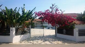 Fotografia do Villa Karina - Near Achladies Beach em Skiathos