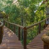 Comfort Chalet - Resort view