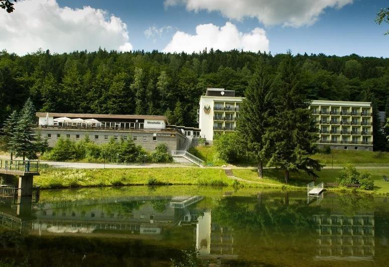 Hotel Schwarzbachtal, Markneukirchen