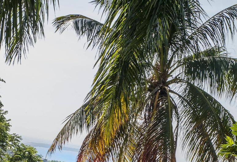 Ekolojik Resort, Cap-Haitien, Deluxe Room, 1 Queen Bed, Non Smoking, Ocean View, Guest Room View