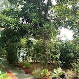 スタンダード トリプルルーム 禁煙 ガーデン - リビング エリア