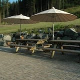 Large Family House, Large Terrace and View, no Men's Groups, Olsberg