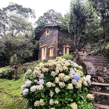 Picture of Shirori in Nainital