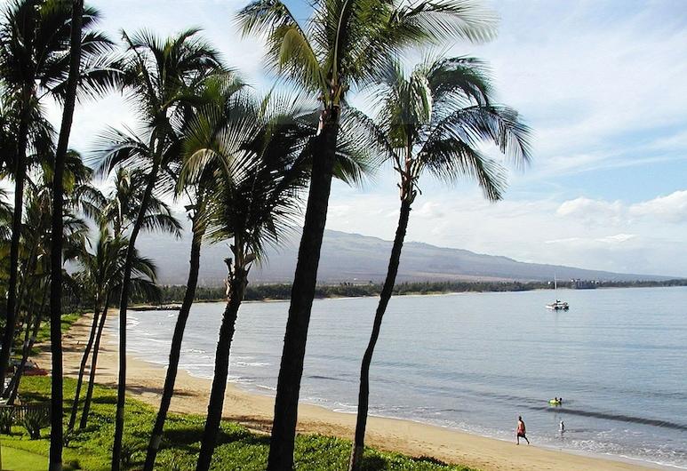 Central Maui Hostel, Wailuku, Beach