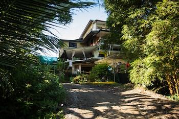 Manuel Antonio bölgesindeki Hostel Manuel Antonio resmi