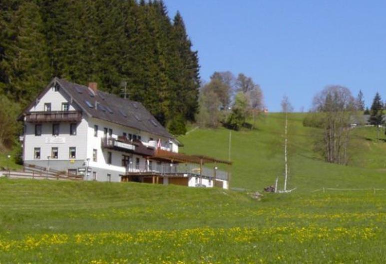 Gasthaus Pension Donishäusle, Titisee-Neustadt