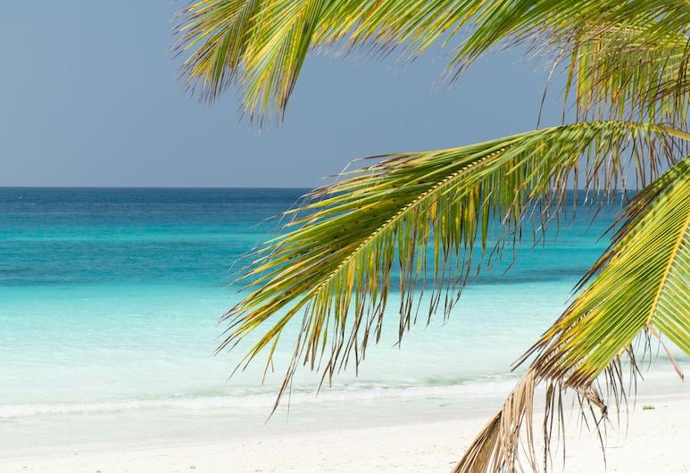 تيكيتام بالمز بوتيك هوتل, بونجوي, الشاطئ
