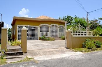 Gambar Cozy Comfort Inn di Port Antonio