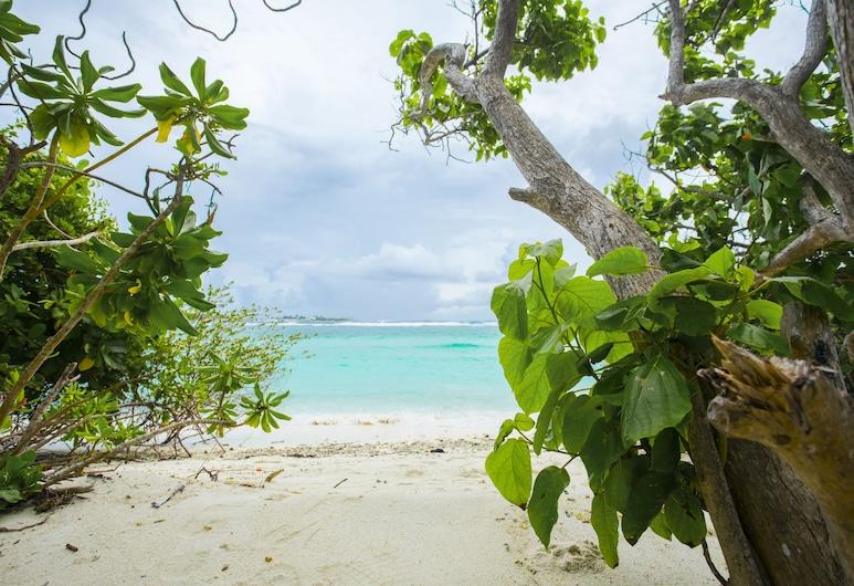 Sea Retreats Thulusdhoo, Thulusdhoo Island, גינה