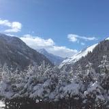 Skats uz kalniem