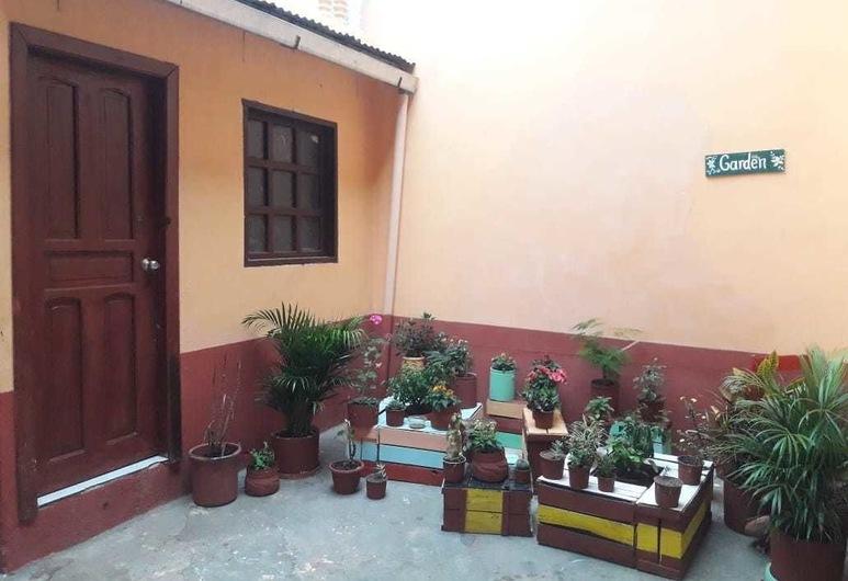 Friendly House & Hostel, Quito, Terrasse/patio