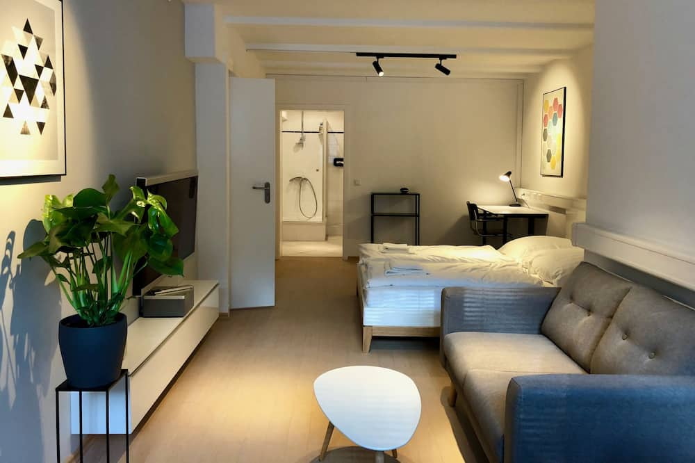 جناح إستديو بتصميم مميز - سرير كبير - الصورة الأساسية