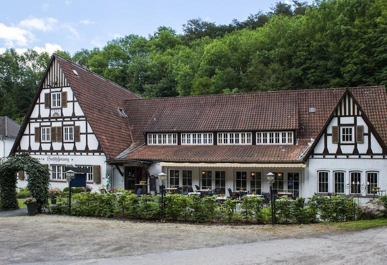 Landhaus Hirschsprung, דטמולד