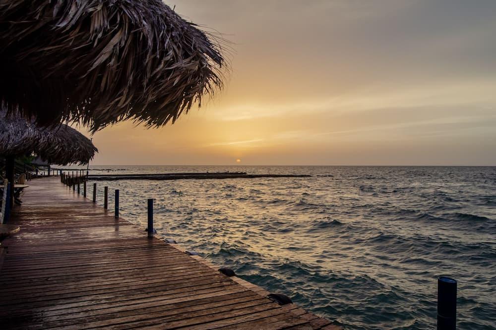 Z widokiem na plażę/ocean