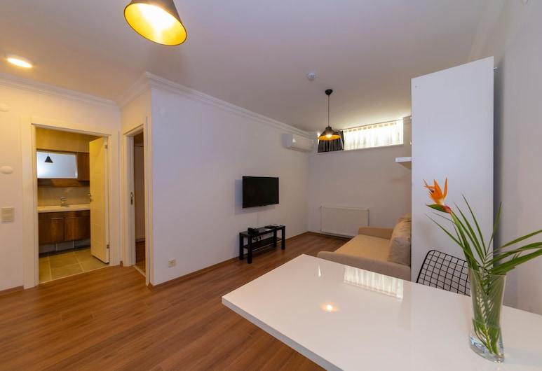 Joy Suites, Istanbul, Basement Suite, Værelse