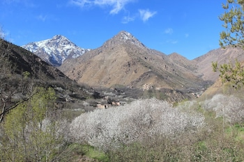 Picture of Dar Adouss in Asni