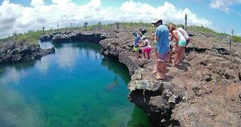 Picture of Hostal La Isla del Descanso in Puerto Villamil