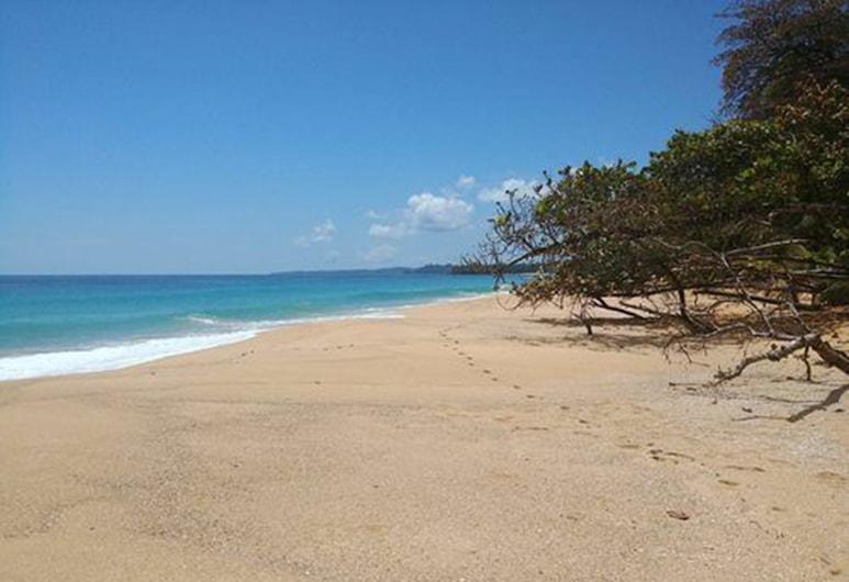 Paradise Waits, Bocas del Toro, Plaj