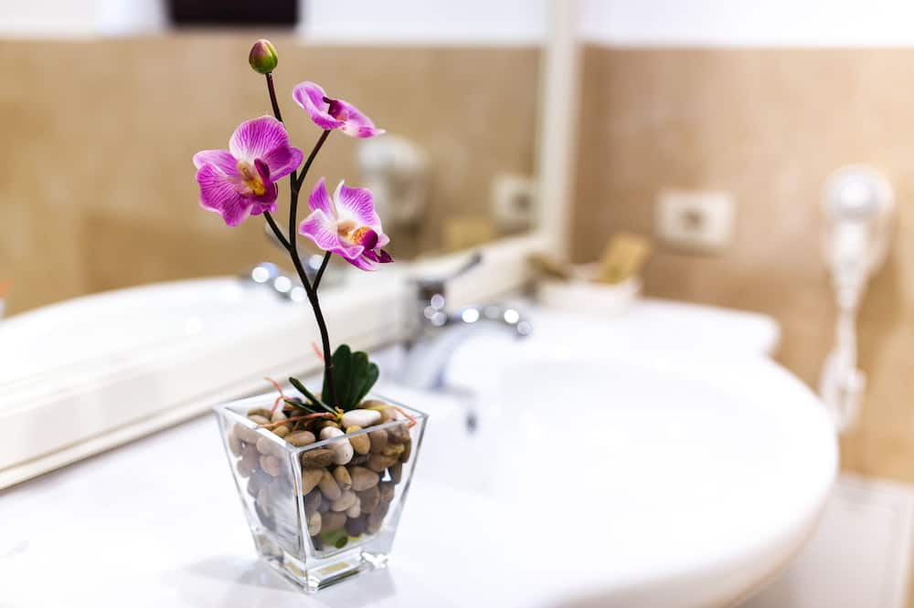 Δίκλινο Δωμάτιο (Double) (4*) - Μπάνιο