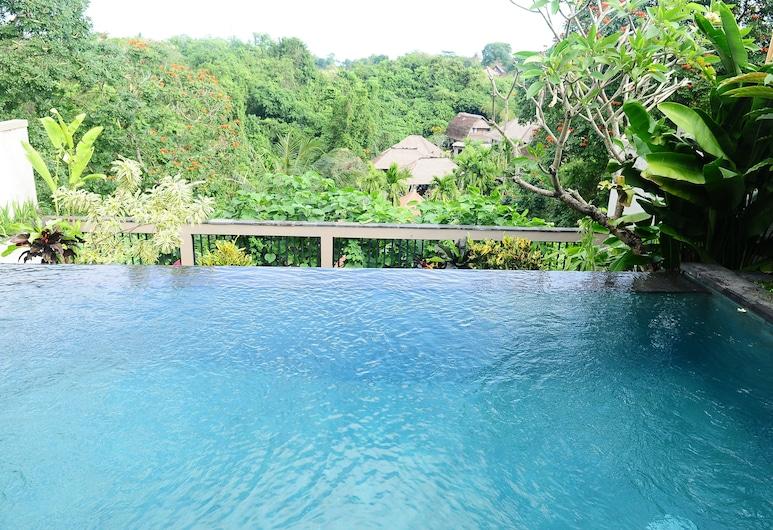 Letung Villa, Sukawati, Infinity Pool