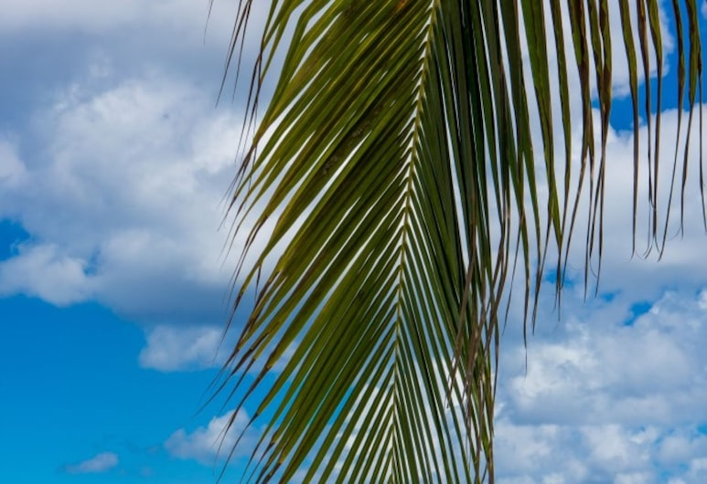 Plantation Village by Cayman Villas, Playa Seven Mile, Playa