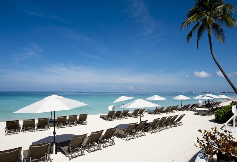 Regal Beach Club by Cayman Villas, Bãi biển Seven Mile, Bãi biển