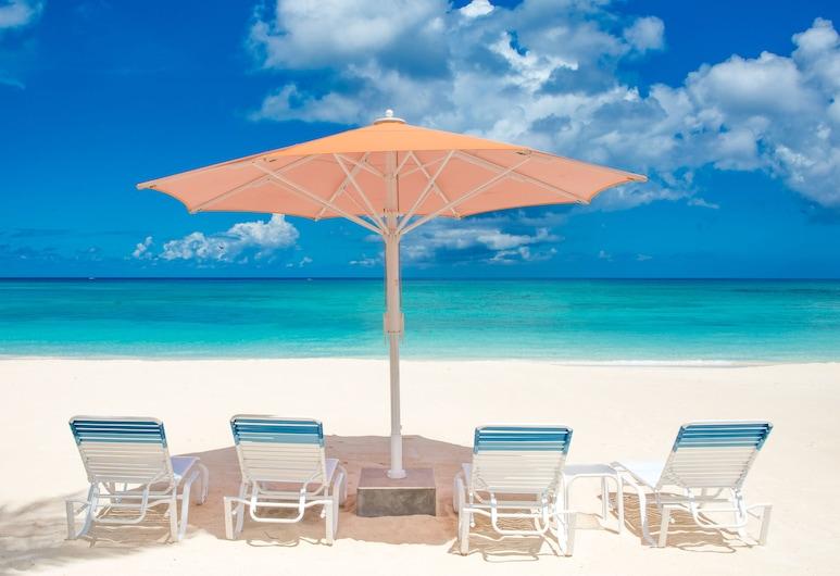 開曼別墅檸檬樹別墅酒店, 七里海灘, 海灘