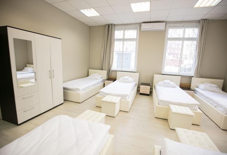 All Bears Hostel, Moscow, Wspólny pokój wieloosobowy o podstawowym wyposażeniu, tylko dla kobiet (7 beds), Pokój