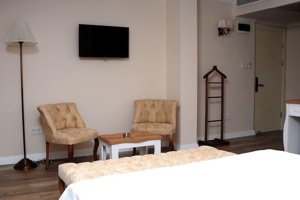 Standartinio tipo dvivietis kambarys - Svetainės zona
