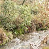Cottage - Property Grounds