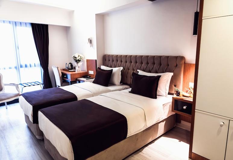 Tymbris Hotel Eskisehir, Eskisehir, Standartinio tipo kambarys (1 dvigulė / 2 viengulės lovos), Svečių kambarys