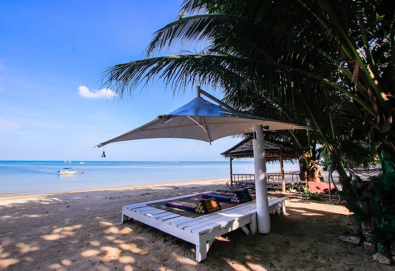 班敦海灘酒吧青年旅舍 - 只招待成人, 蘇梅島, 海灘