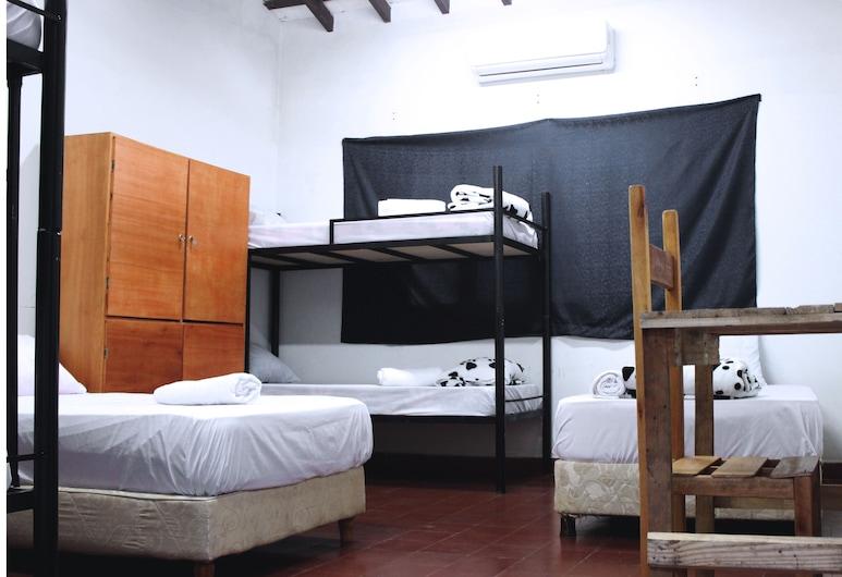 Central Hotel Asuncion, Asunción, Ģimenes numurs, viena guļamistaba, nesmēķētājiem, Viesu numurs