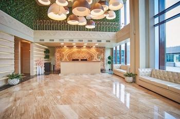 弗拉迪佛斯托克海灣花園酒店的圖片