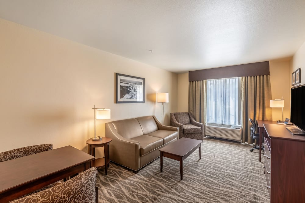 套房, 1 張特大雙人床和 1 張沙發床, 非吸煙房 - 客廳