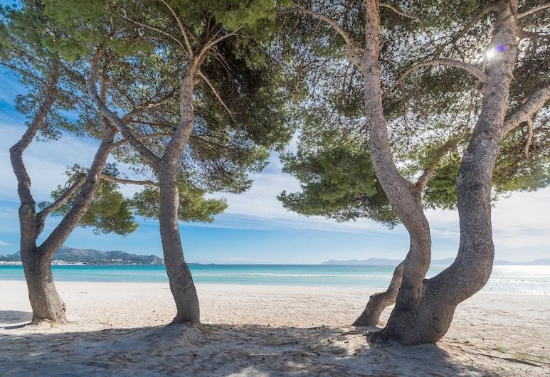 EDIFICIO PLAYA 2B, Alcudia, Spiaggia