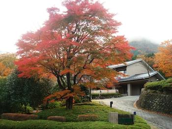 A(z) Gora Saryo hotel fényképe itt: Hakone