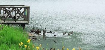 Sanyi — zdjęcie hotelu West Lake Resortopia