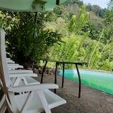 Superior Villa - Природный бассейн