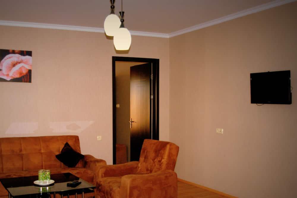 套房 - 客房