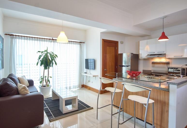 تور 9+2, سانتو دومينجو, شقة في المدينة - بمطبخ - بدون مناظر, منطقة المعيشة