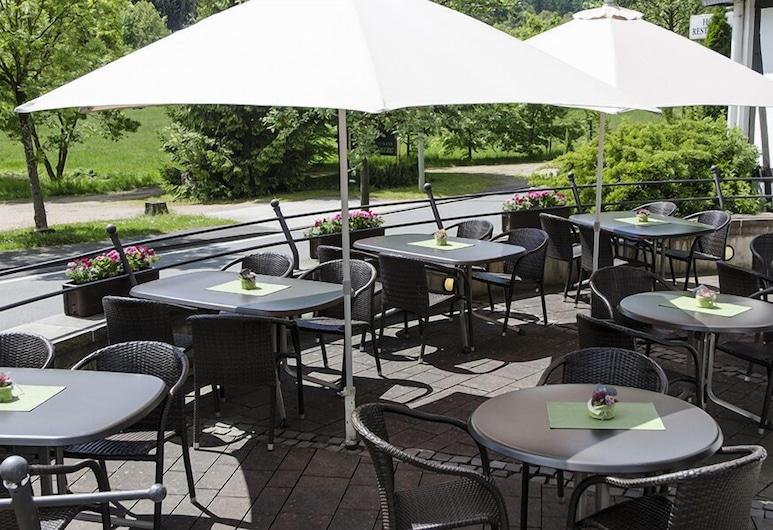 施維茵斯堡餐廳飯店, 萊內斯塔特, 露台