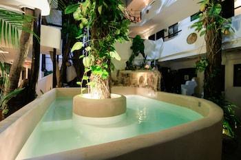 在卡曼海滩的诺拉旅馆酒店照片