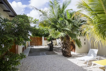 Picture of Little Cactus Apartments Aruba in Noord