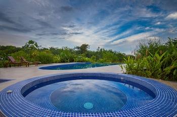 Image de Avatar Private Reserve à Puerto Jiménez